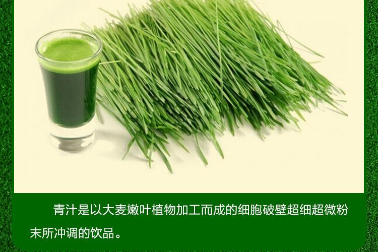 曲魔大麦若叶青汁粉90克蚂蚁代餐粉_05.jpg