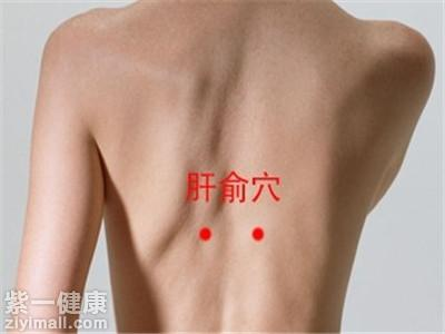 拔罐减肥的位置图之背部穴位