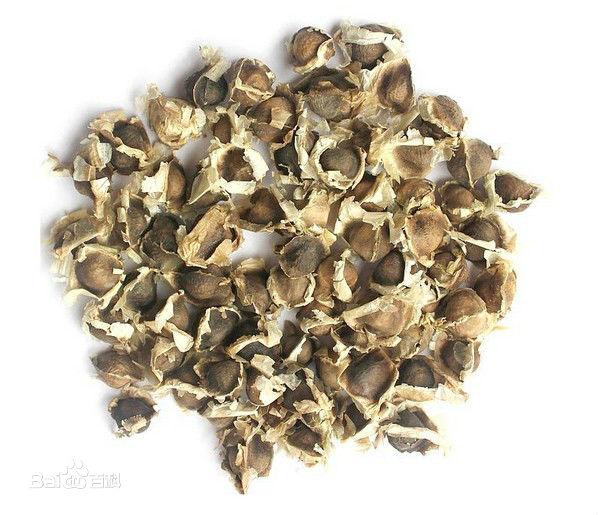辣木籽的功效与作用及吃法_辣木籽的副作用有哪些 -辣木籽