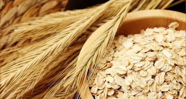 燕麦片的功效与作用_怎么吃吃法_营养价值_燕麦片怎么吃可以减肥