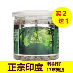 印度特选级 辣木籽 颗粒均匀 100g*罐
