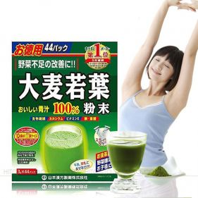 日本 山本汉方 大麦若叶青汁 3g*44袋